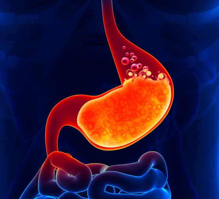 Healthy Digestive Enzyme and Acid Production